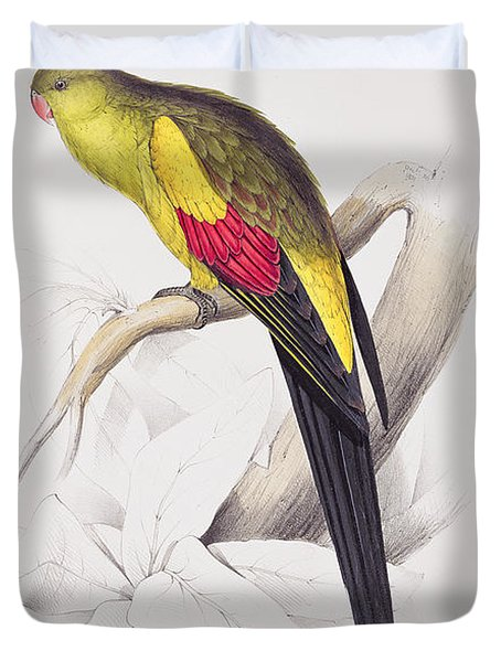 Black Tailed Parakeet Duvet Cover by Edward Lear