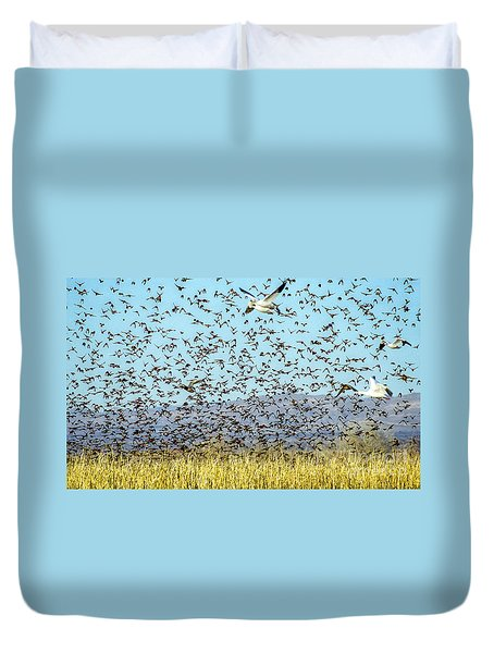 Blackbirds And Geese Duvet Cover