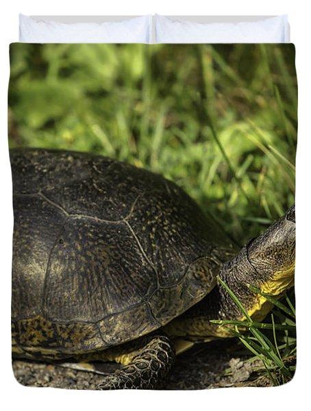 Blanding's Turtle Duvet Cover