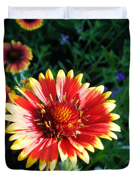 Blanket Flower Duvet Cover by Lizi Beard-Ward