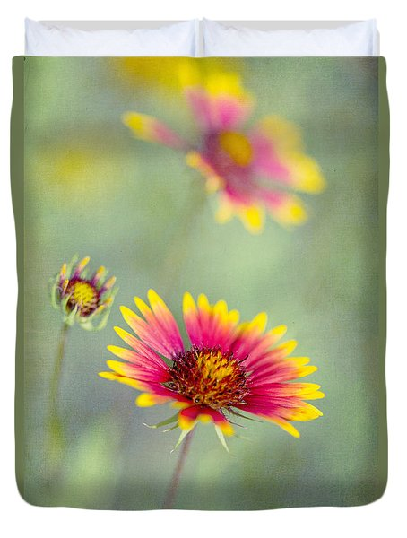 Blanket Flowers Duvet Cover by Elena Nosyreva
