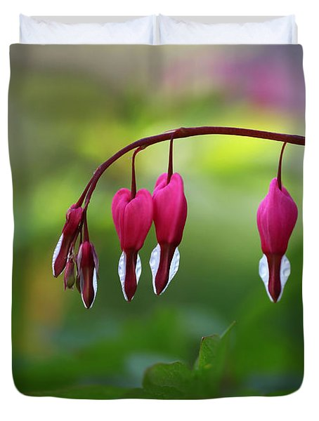 Duvet Cover featuring the photograph Bleeding Hearts by Annie Snel