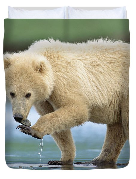 Blond Grizzly  Playing With Stone Katmai Duvet Cover