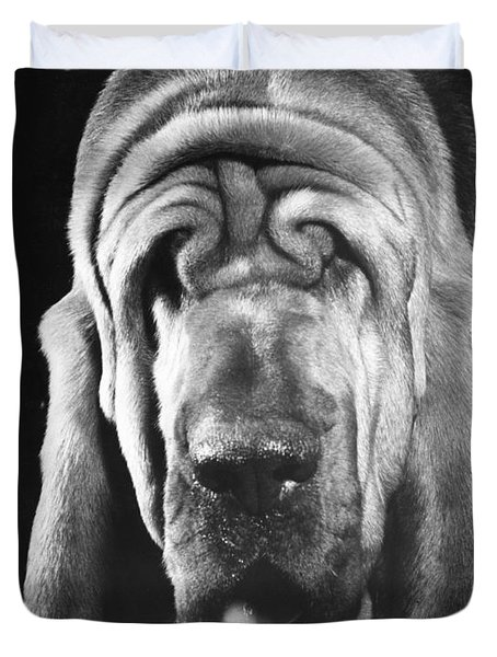 Bloodhound Portrait Duvet Cover by ME Browning