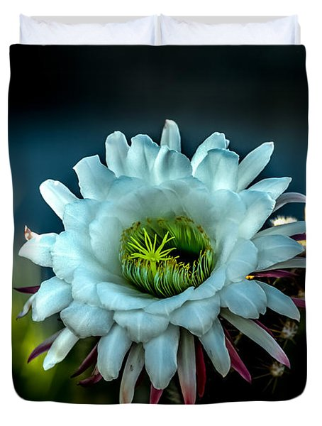 Blooming Argentine Giant Duvet Cover