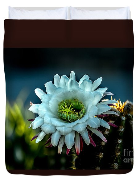 Blooming Argentine Giant Duvet Cover by Robert Bales