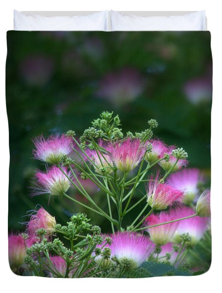 Blooms Of The Mimosa Tree Duvet Cover by Jeanette C Landstrom