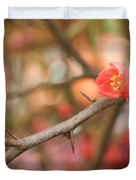 Duvet Cover featuring the photograph Blossom Amidst The Thorns by Lisa Knechtel