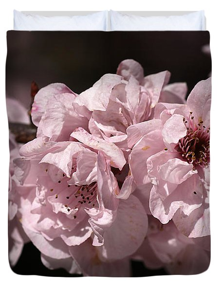 Blossom In Pink Duvet Cover by Joy Watson