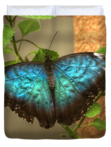 Blue And Black Butterfly Duvet Cover