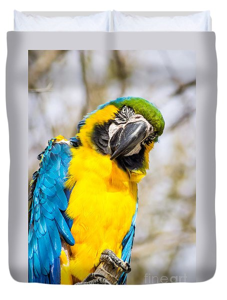 Blue And Gold Macaw Parrot Duvet Cover