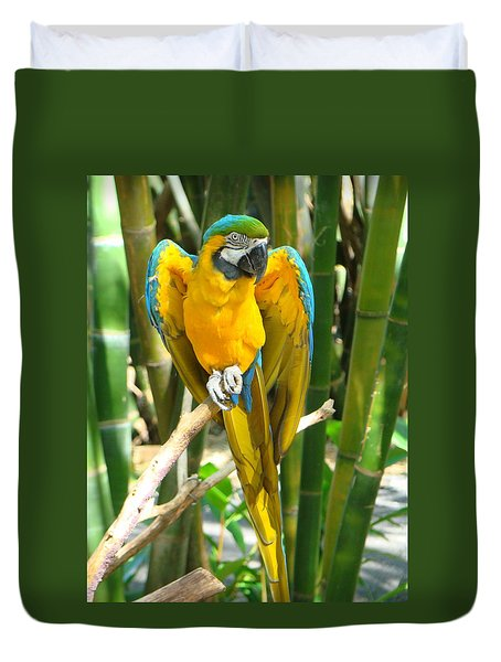 Duvet Cover featuring the photograph Blue And Gold Macaw by Phyllis Beiser