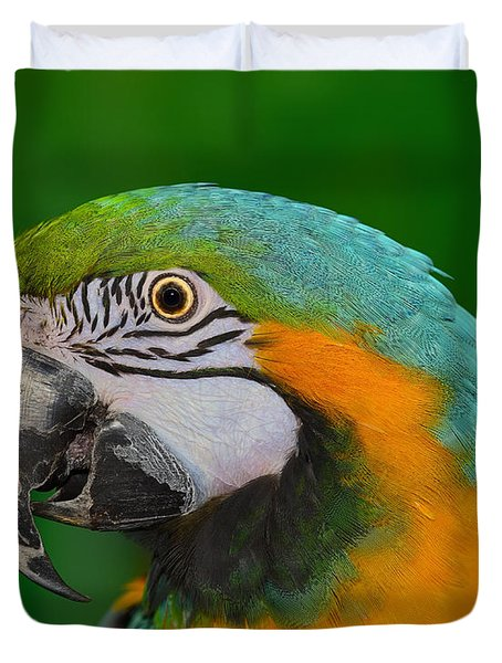 Blue And Gold Macaw Duvet Cover by Tony Beck