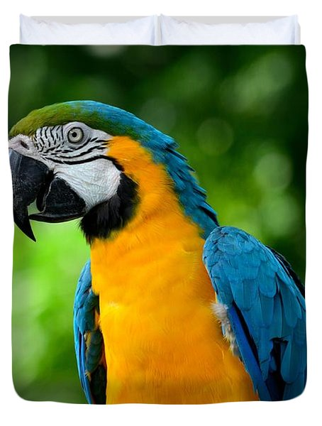 Blue And Yellow Gold Macaw Parrot Duvet Cover