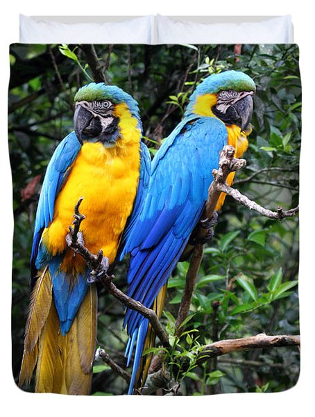 Blue And Yellow Macaws Duvet Cover