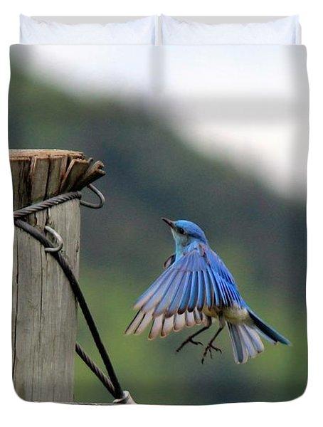 Duvet Cover featuring the photograph Blue Bird by Ann E Robson