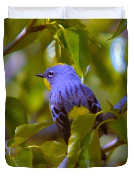 Blue Bird With A Yellow Throat Duvet Cover by Jeff Swan