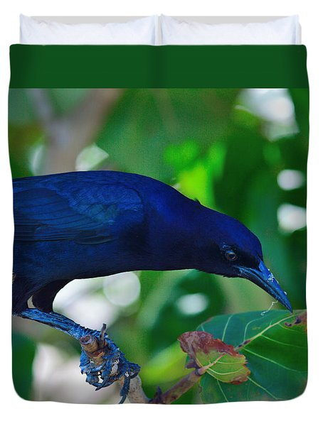 Blue-black Black Bird Duvet Cover
