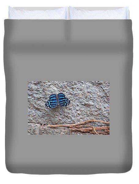 Blue Butterfly Myscelia Ethusa Art Prints Duvet Cover