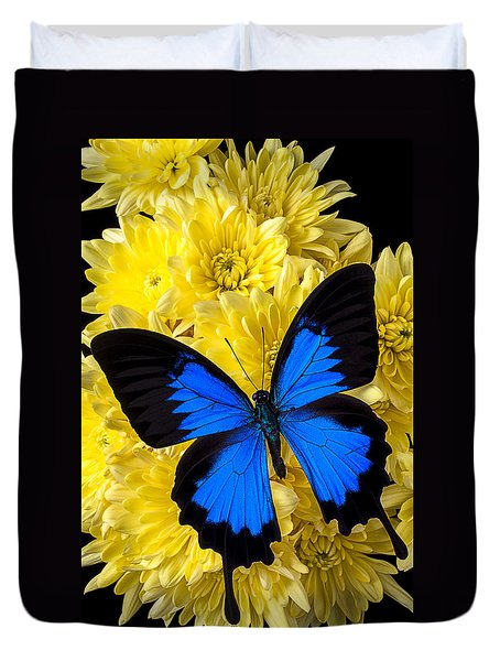 Blue Butterfly On Poms Duvet Cover by Garry Gay