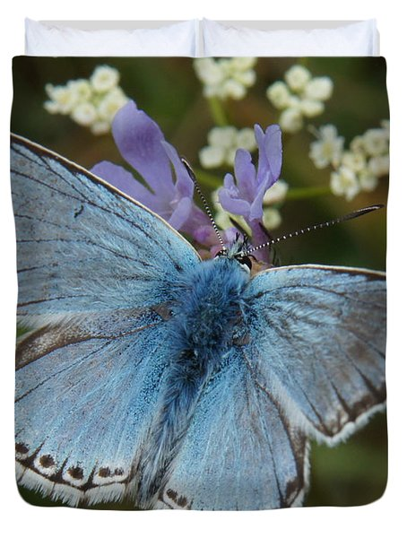 Duvet Cover featuring the digital art Blue Butterfly by Ron Harpham