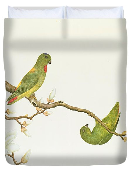 Blue Crowned Parakeet Hannging On A Magnolia Branch Duvet Cover by Chinese School