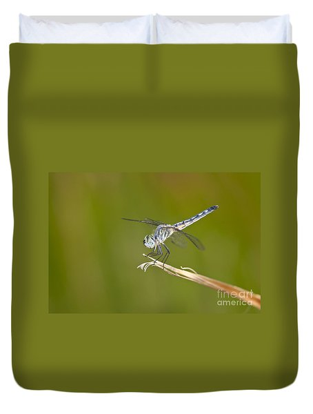 Duvet Cover featuring the photograph Blue Dasher On The Edge by Bryan Keil