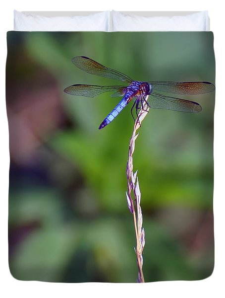 Blue Dragonfly On A Blade Of Grass  Duvet Cover by Chris Flees
