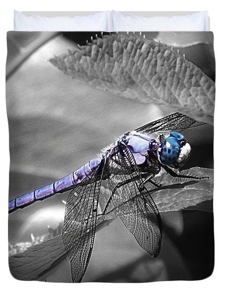 Blue Eyed Dragonfly Duvet Cover