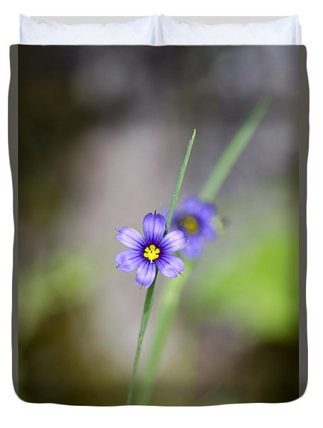 Blue Eyed Grass Wildflower Duvet Cover