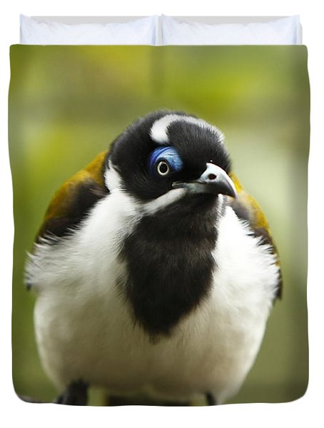 Blue Eyed Honeyeater Duvet Cover