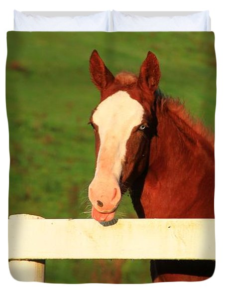 Blue Eyed Horse Duvet Cover