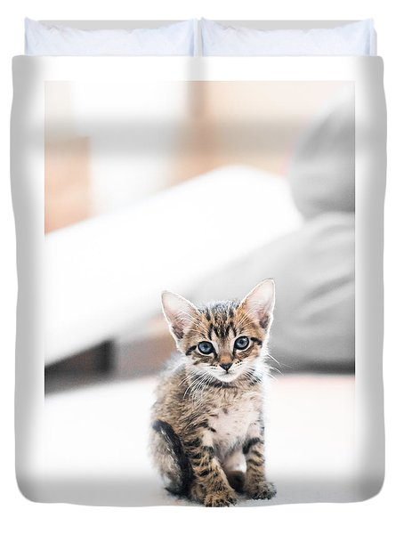 Blue Eyed Kitten Duvet Cover by Shelby  Young