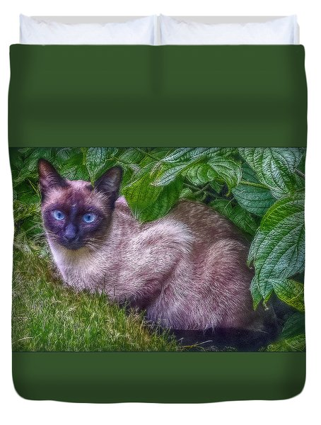 Duvet Cover featuring the photograph Blue Eyes by Hanny Heim