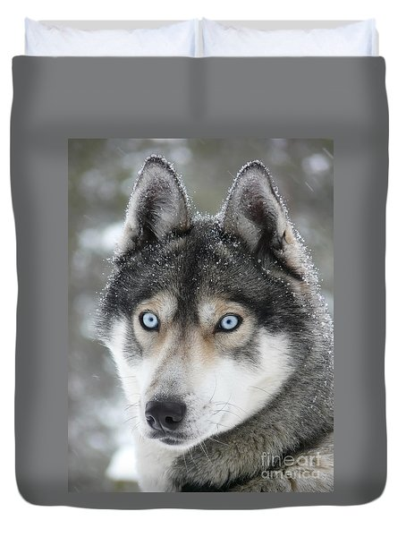 Blue Eyes Husky Dog Duvet Cover