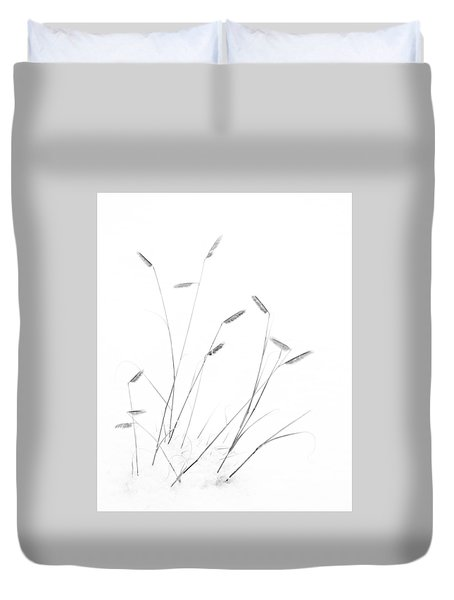 Blue Grama Grass In Snow Duvet Cover by Mary Lee Dereske