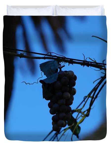 Blue Grapes Duvet Cover by Dany Lison