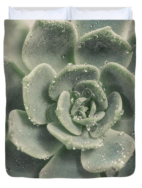 Blue Green Succulent 2 Duvet Cover