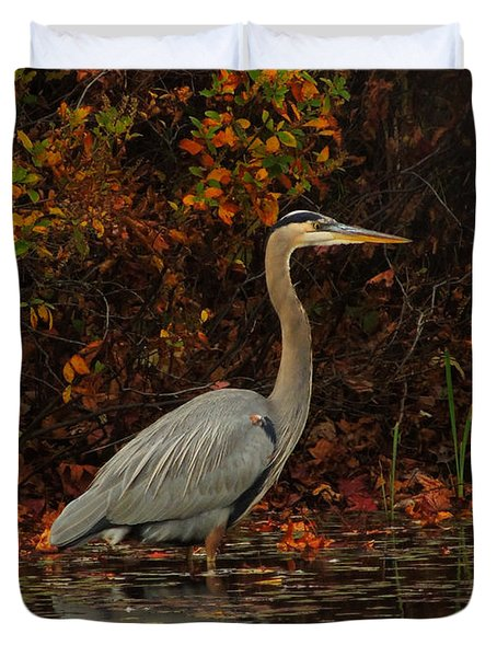 Blue Heron In The Fall Duvet Cover by Raymond Salani III
