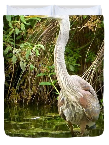 Blue Heron Reflection Duvet Cover by Susan Garren
