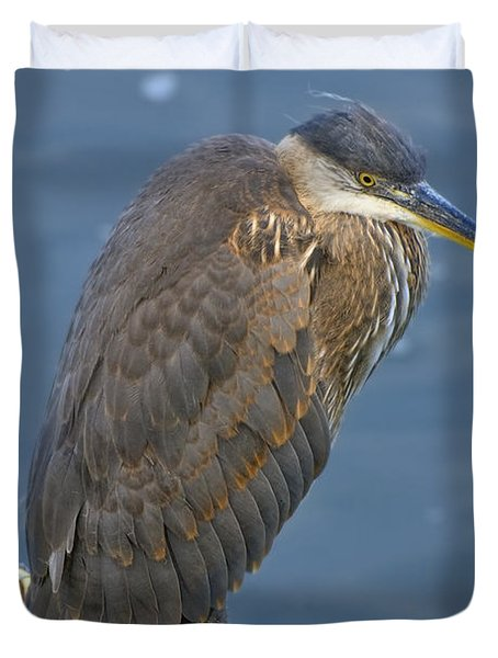 Blue Herron Duvet Cover