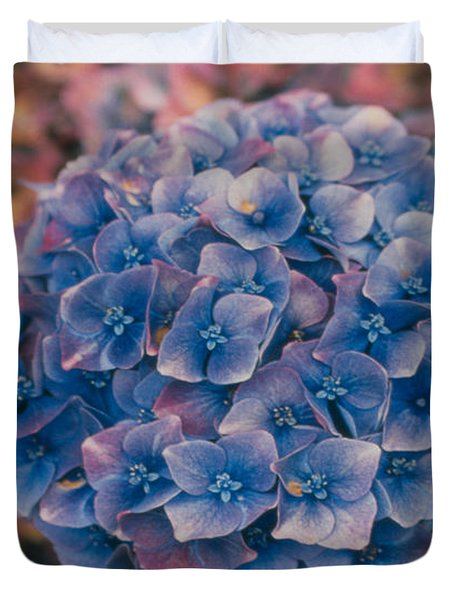 Blue Hydrangea Duvet Cover by Heather Kirk