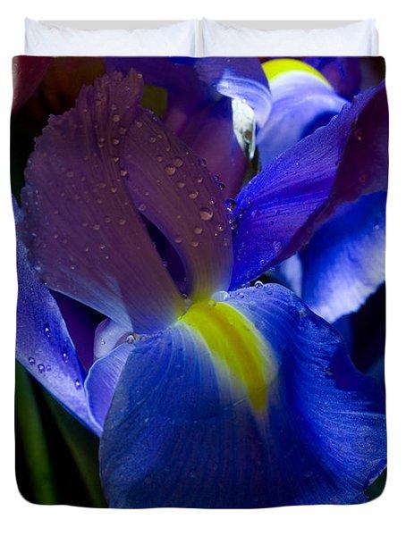 Blue Iris Duvet Cover by Joann Vitali