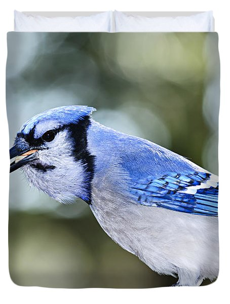 Blue Jay Bird Duvet Cover
