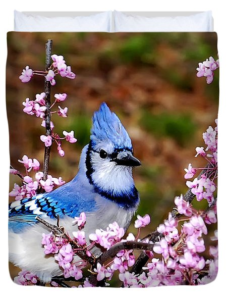 Blue Jay In The Pink Duvet Cover