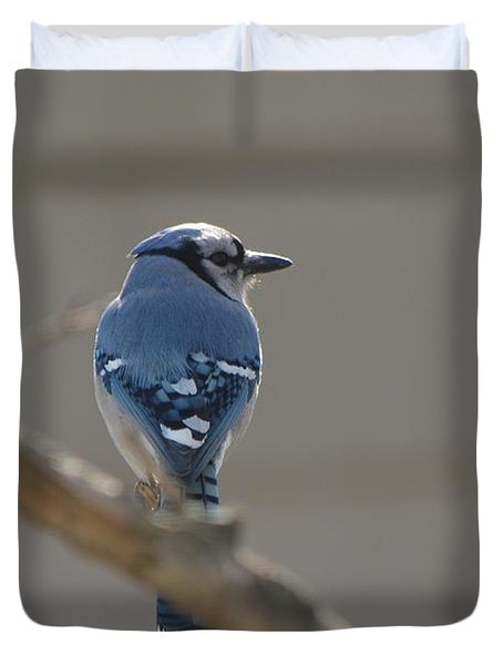 Blue Jay Duvet Cover