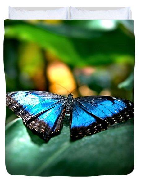 Blue Lit Butterfly Duvet Cover