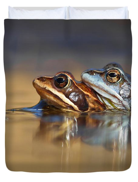 Blue Love ... Mating Moor Frogs  Duvet Cover