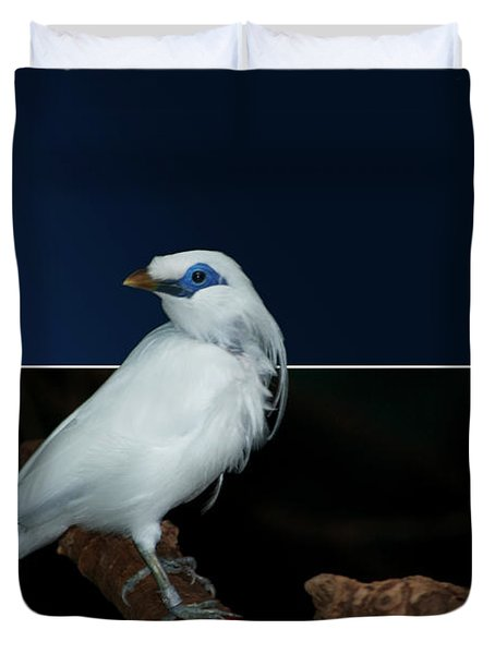 Blue Mask Bandit Bird Duvet Cover by Thomas Woolworth