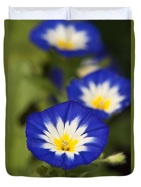 Duvet Cover featuring the photograph Blue Morning Glory Flowers by Christina Rollo